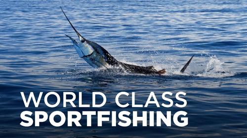 WORLD CLASS SPORTFISHING