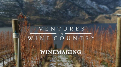 VENTURES IN WINE COUNTRY (1)