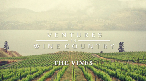 VENTURES IN WINE COUNTRY